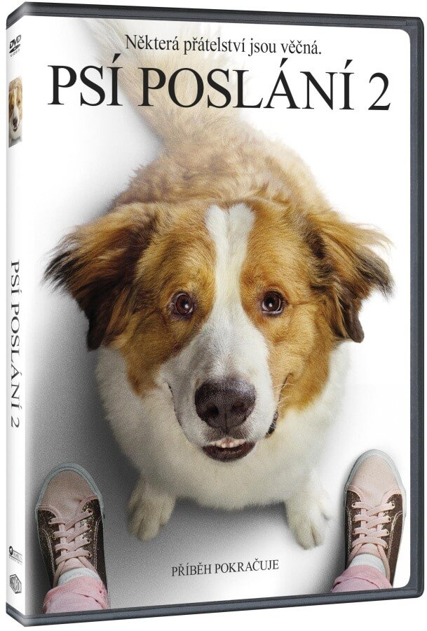 2x DVD